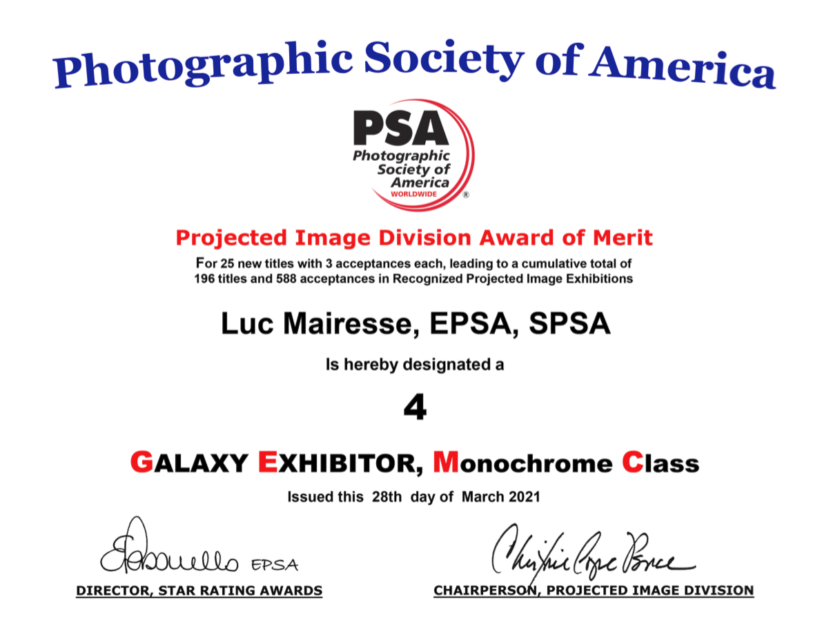https://www.photoclubrivabella.be/awards21/PIDM4GAL.png
